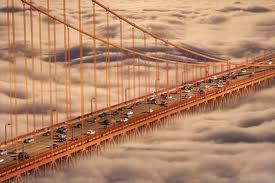 larghe intese nebbia